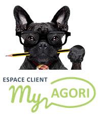 Travail Collaboratif : Portail MyAgori
