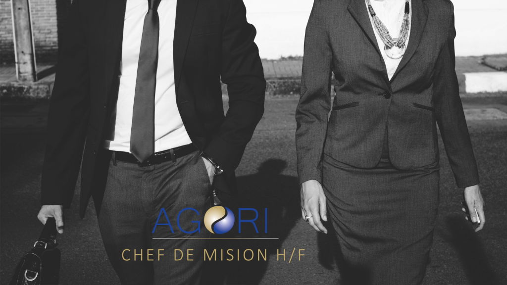 Annonce job - chef de mission