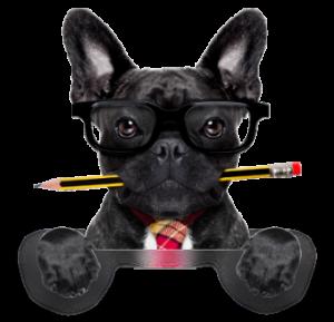 chien mascotte agori